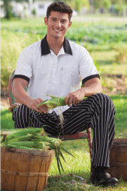 Chef pants chalkstripe